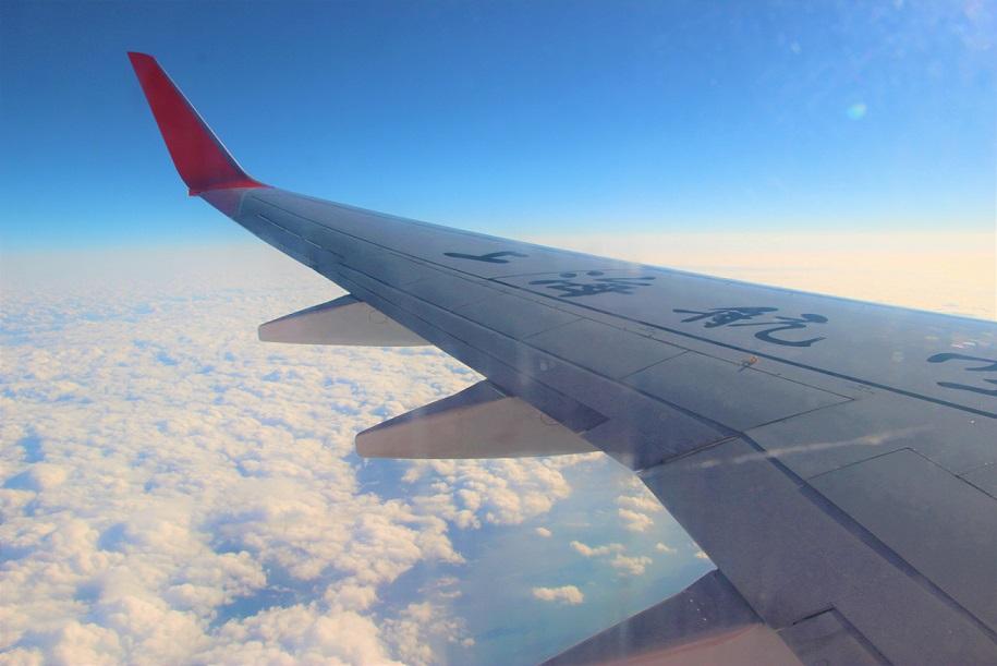 1shanghai 上海航空上空から