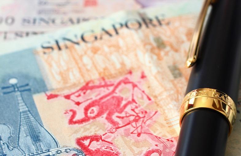 シンガポールドルと万年筆の写真