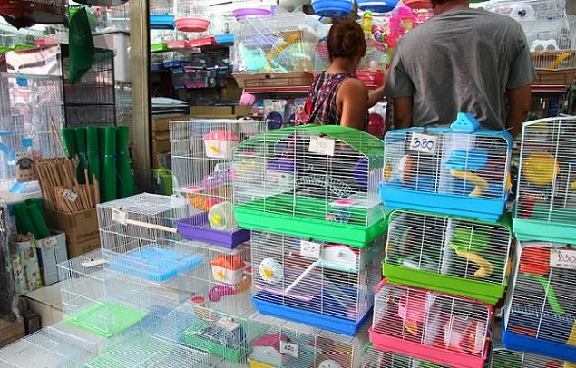 チャトゥチャック市場のハムスターのゲージ販売