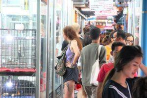 バンコクのチャトゥチャック市場の美女|タイお勧め観光スポット