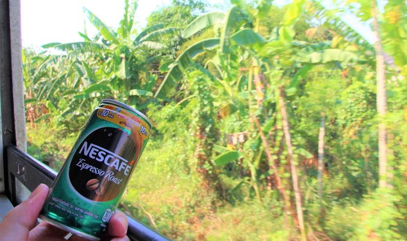 砂糖なし低カロリーの缶コーヒーと旅をする|海外鉄道の旅をタイ国鉄で楽しむ|車窓を見ながカフェインも摂れる!